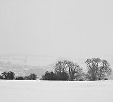 Winter Snowfall 2013 by Billy Hodgkins