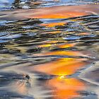 Sandy Beach Reflections by Reese Ferrier