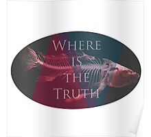 Where is the truth Poster