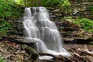 April Visit to Erie Falls in Ganoga Glen by Gene Walls