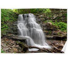 April Visit to Erie Falls in Ganoga Glen Poster