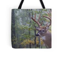 Whitetail Buck Deer Portrait in deciduous forest habitat Tote Bag