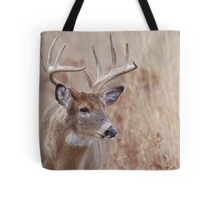 Whitetail Deer Portrait, Trophy Buck in prairie habitat Tote Bag