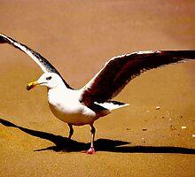 Spread your wings by Luke Lansdale