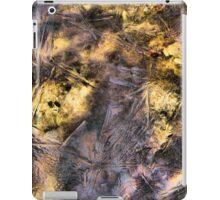 Gold and Mauve Crystal Waters iPad Case iPad Case/Skin