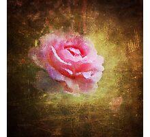 Rosie Photographic Print