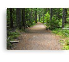 Mountain Path, Mt Rainier Canvas Print