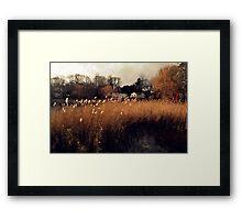 Wonderfull Framed Print