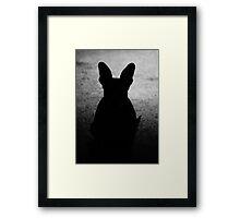 Shadowy Figure Framed Print