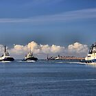 Harbour SVITZER tugs in a Row - Newcastle Harbour NSW Australia by Phil Woodman