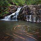 Billy Creek Falls by Travis Easton