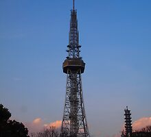Nagoya TV Tower 2 by Fike2308