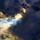 Spotlight by Carolyn  Fletcher