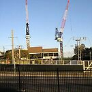 thee cranes ov Brisbane 2013 DAILY TOUR - Day 29 by Craig Dalton