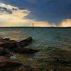 Rain Across The Lake by Carolyn  Fletcher