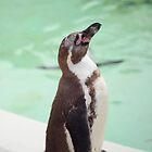 Happy penguin by NaomiGrace