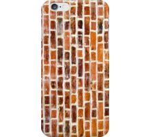 Redbrick Wall iPhone Case/Skin
