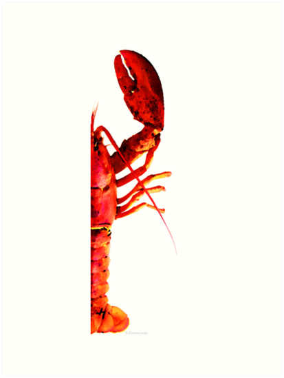 Lobster - The Right Side by Sharon Cummings