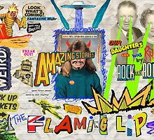 The Flaming Lips Poster by junestar00