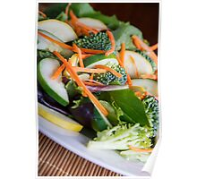 Fresh Vegetable Salad on Angle Poster