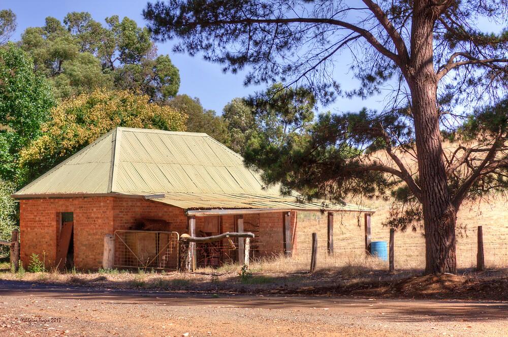 Blackwood Barn, Bridgetown, Western Australia by Elaine Teague