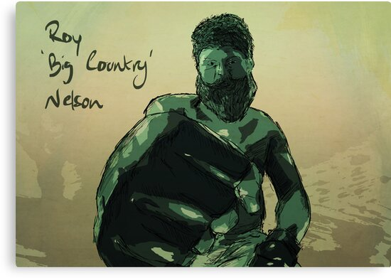Roy 'Big Country' Nelson by Ajan