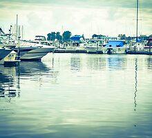The Oswego Harbor by Jonathan Evans