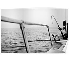 Fishing rods Poster