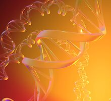 3D Human DNA Strand in Clear Plastic Material by EmilyFNM3D