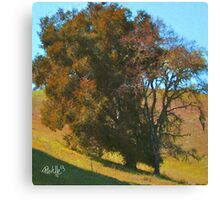 Rust Oak Canvas Print