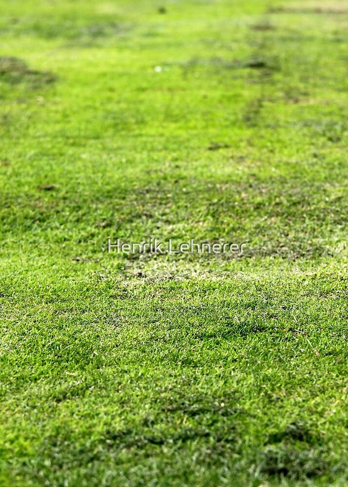 Old Green Grass by Henrik Lehnerer