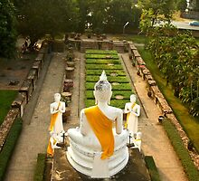 Buddha at Wat Yai Chaimongkhon - rear view by missmoneypenny