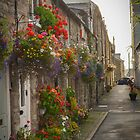 Flowers of the streets by Jonathan Evans