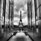 Eiffel tower viewed from wall for peace by vribeiro