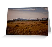 Landscapes Greeting Card