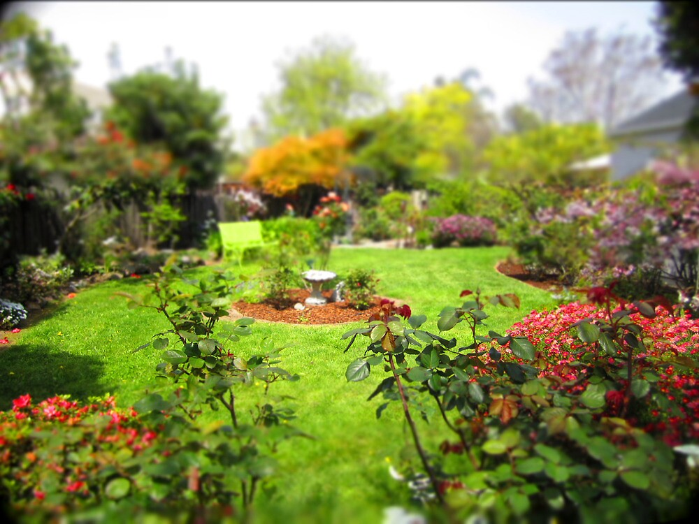 Nanny's Garden by Andrea  Muzzini