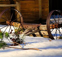 Winter Rustic by Barbara  Brown