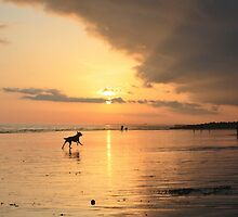 Low Tide Sunset - Hove #25 by Matthew Floyd