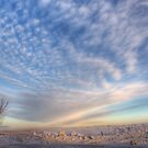 Saskatchewan Winter by Mindy McGregor