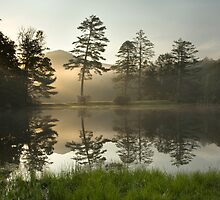 Sunrise over Lake Hampton, North Carolina by Matt Tilghman