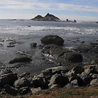 Rocky beach after a storm. by Carolynn Cumor