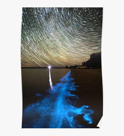 Bioluminescence in the Gippsland Lakes Poster