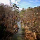 Noccalula Falls River by donnau
