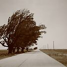 Oklahoma Route 66, 2012, Sepia. by Frank Romeo