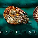 Nautilus Voyager by Ken Wright