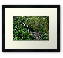 On the road to Hana Framed Print