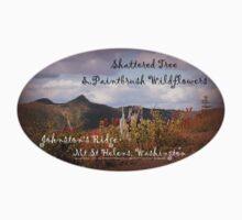 shattered tree & paintbrush wildflowers on Johnston's Ridge oval Kids Tee