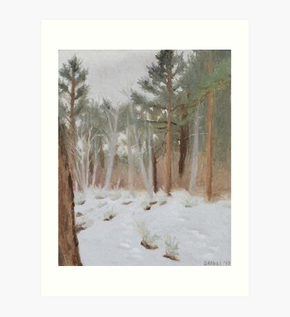 Galena Creek Forest (Plein-air Study) Art Print