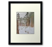 Galena Creek Forest (Plein-air Study) Framed Print