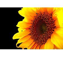 Solar Photographic Print